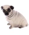 Spaarpot mopshond hond 12 cm