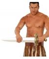 Speelgoed barbaren zwaard 75 cm