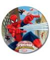 Spiderman feestbordjes warrior 8x