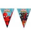 Spiderman warriors vlaggenlijn