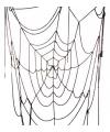 Spinnenweb decoratie zwart 100 cm