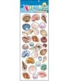 Stickervel schelpen