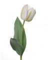 Tulp wit 48 cm