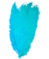 Turquoise spadonis sierveer 50 cm