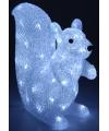 Verlichting eekhoorn 60 lichtjes