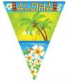 Vlaggenlijn aloha 5 meter