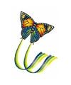 Vlinder vlieger gekleurd