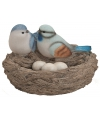 Vogelnest met vogels en eitjes blauw