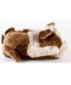 Volwassenen dieren sloffen bulldog