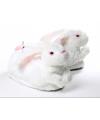 Volwassenen dieren sloffen konijn wit