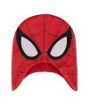 Wintermuts spiderman