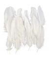 Witte decoratie veren 350 stuks