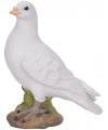 Witte duif stenen beeld 24 cm