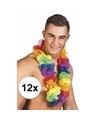 12x grote regenboog hawaiikransen