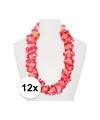 12x hawaii kransen roze oranje