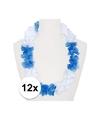 12x hawaii kransen wit blauw