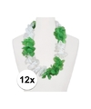 12x hawaii slinger wit groen
