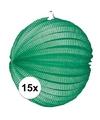 15x lampionnen groen 22 cm