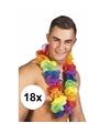 18x grote regenboog hawaiikransen