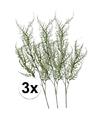 3x groene asparagus kunstbloemen tak 73 cm groen