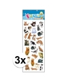 3x stickervel katten