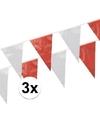 3x vlaggenlijnen rood wit 10 meter
