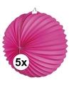 5x lampionnen fuchsia roze 22 cm