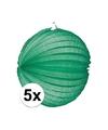5x lampionnen groen 22 cm