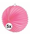 5x lampionnen roze 22 cm