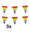 5x regenboog vlaggenlijn
