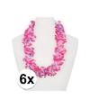 6x hawaii slinger roze paars