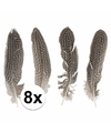 8x fazanten veren