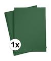 A4 hobby karton donkergroen 180 grams 1x