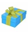 Blauw cadeaudoosje 13 cm met lichtgroene strik