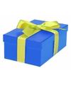Blauw cadeaudoosje 19 cm met lichtgroene strik
