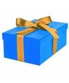 Blauw cadeaudoosje 21 cm met gouden strik