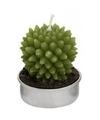 Cactus waxinelichtje 5 cm type 3