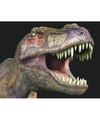 Dieren magneet 3d t rex