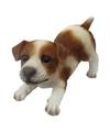 Dierenbeeld jack russel hond bruin wit 14 cm