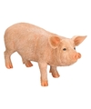 Dierenbeeld varken big 36 cm