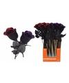 Halloween halloween kunst roos zwart met rood