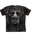 Honden t shirt pitbull voor volwassenen