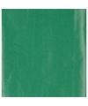 Inpakpapier groen 70 x 200 cm
