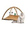 Katten kitten speelmat met luipaard print 55 cm
