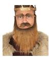 Krijger baard set met snor en wenkbrauwen bruin