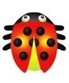 Lieveheersbeestje vlieger 55 x 65 cm