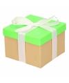 Neon groen cadeaudoosje 15 cm met witte strik