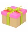 Neon roze cadeaudoosje 15 cm met lichtgroene strik