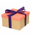 Neon zalmroze cadeaudoosje 16 cm met paarse strik