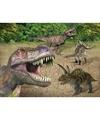 Placemat dinosaurussen 3d 30 x 40 cm